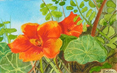 Photo de fleur a dessiner 8 - Photo de fleur a dessiner ...