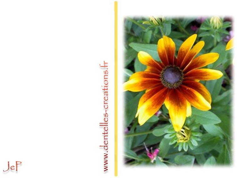 Photo de fleur a imprimer - Fleur a imprimer gratuit ...