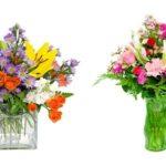 photos fleurs dans un vase